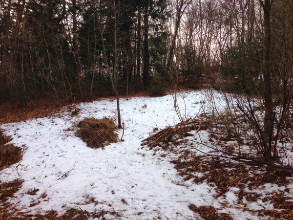 小屋暮らし用土地