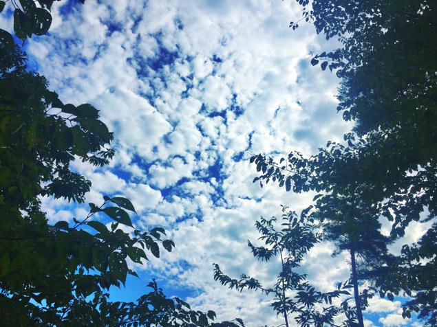台風明けの空