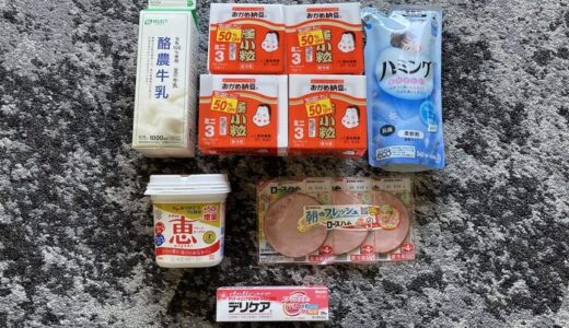 FamiPay(ファミペイ)半額キャンペーンを利用して50%OFFで買い物してみた。